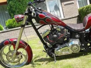 harley davidson Chopper one of a kind. !