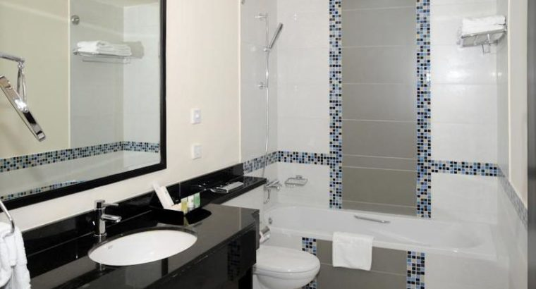 Fully Furnished Deluxe One Bedroom Hotel Apartment