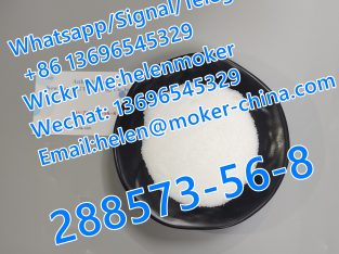 CAS 288573-56-8 with Low Price