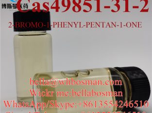 Buy cas 49851-31-2 2-Bromovalerophenone